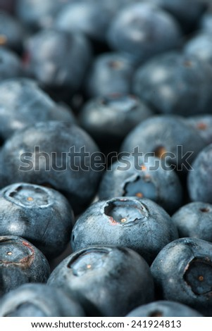 composition from a fresh bow blueberry  - stock photo