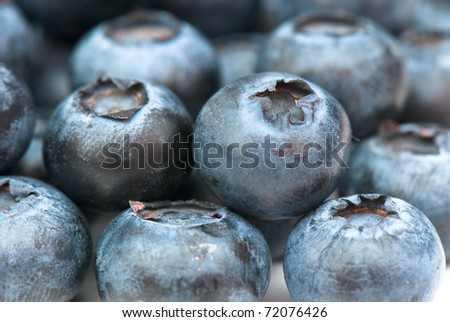composition from a fresh bow whortleberry on the white isolated background - stock photo