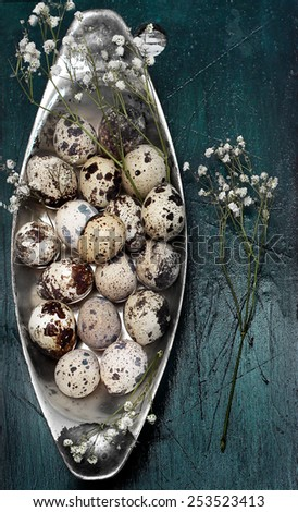 composition of quail eggs - stock photo
