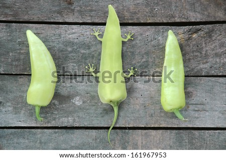 composition of three green peppers - two peppers with one imagined genetically modified pepper with legs as a result of animal molecules in it - on gray wood background. - stock photo