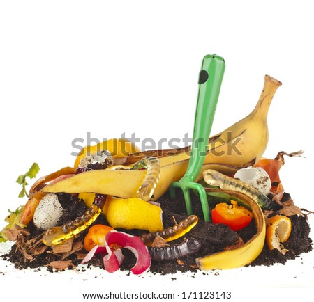 compost  pile of kitchen scraps isolated on white background - stock photo