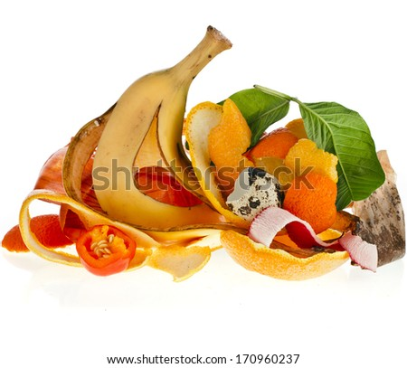 compost  pile of kitchen scraps isolated on white background close up - stock photo