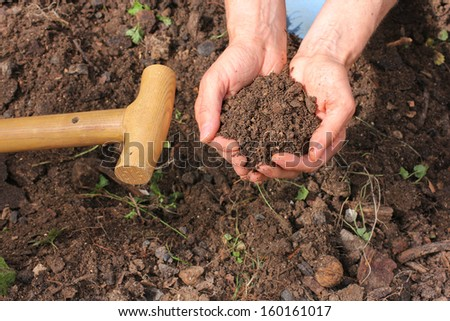 Composted earth with hands - stock photo