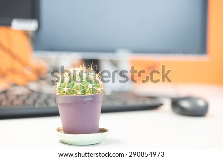 Computer and cactus in flowerpot on table, Shallow DOF - stock photo