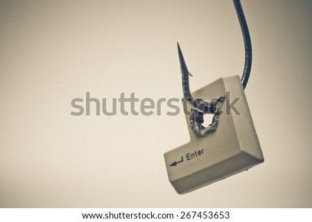 Computer enter button in a fish hook representing computer security breach - stock photo