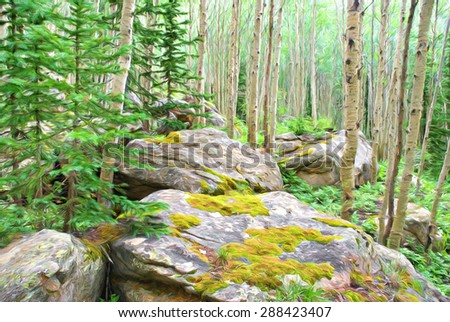 Computer generated artistic image from a photograph of an alpine forest of aspen and evergreen trees framed by big mossy boulders.  - stock photo