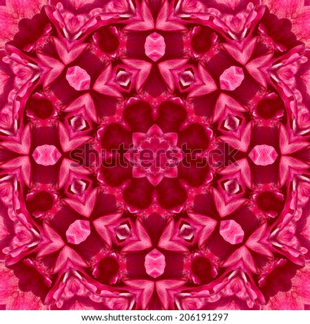 Concentric Flower Center Macro Close-up. Mandala Kaleidoscopic design - stock photo