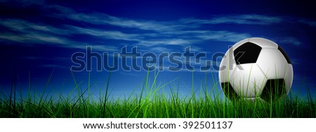 Concept conceptual 3D soccer ball in fresh green summer spring field grass with a blue sky background banner metaphor to sport, goal, competition, play, team, fun, stadium, meadow, activity soccerball - stock photo