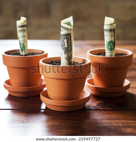 concept financial investment and planning with us dollars - stock photo