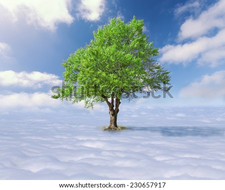 Concept for success - Single tree with green leaves above the clouds at the idyllic sunny day - stock photo