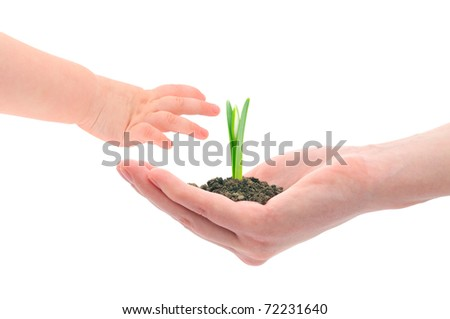 Concept image of a older hand handing sprout to the younger next generation. - stock photo