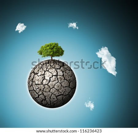 concept of environment : alone survived green three on dried planet - stock photo