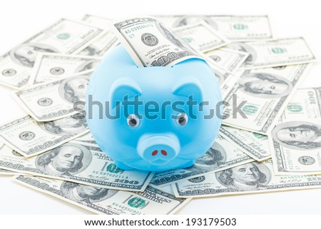 Concept of saving by piggy bank on dollars. - stock photo