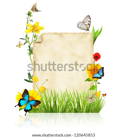 Concept of spring with blank paper for text. isolated on white background - stock photo