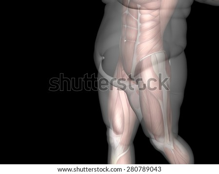 Concept or conceptual 3D fat overweight vs slim fit diet with muscles young man isolated on background metaphor weight loss, body, fitness, fatness, obesity, health, healthy, male, dieting or shape - stock photo