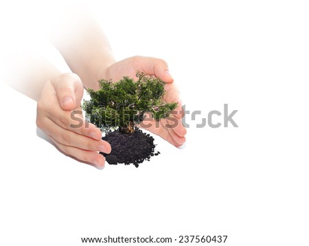 Concept or conceptual human man or woman hands holding protecting growing tree in earth isolated on white background, metaphor to growth, environment, ecology, care, gardening, protection or success - stock photo