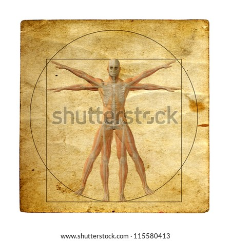 Concept or conceptual vitruvian human body drawing on old paper or book background as metaphor to anatomy,biology,classic,anatomical,circle,symbol,revival,proportion, skeleton or manuscript - stock photo