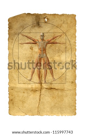 Concept or conceptual vitruvian human body drawing on old paper or book background as metaphor to anatomy,biology,Leonardo,classic,anatomical,circle,symbol,revival,proportion, skeleton or manuscript - stock photo