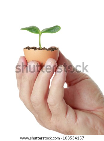 concept, symbolizing new life, new project or new initiative - stock photo