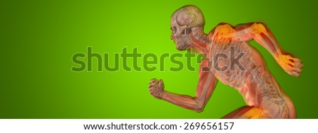 Conceptual 3D human man anatomy or health design, joint or articular pain ache or injury on green gradient background for medical fitness medicine bone care hurt osteoporosis painful arthritis or body - stock photo