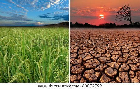 Conceptual images demonstrating the possible effect of global warming - stock photo