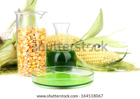 Conceptual photo of bio fuel from corn.  Isolated on white - stock photo