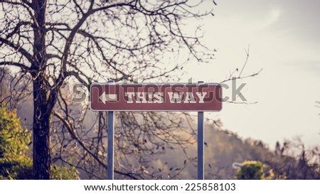Conceptual Road Direction Signage with This Way Texts and Arrow near Tall Leafless Tree. - stock photo