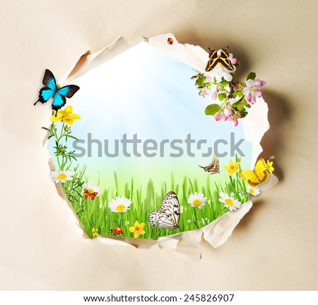 Conceptual spring theme with gappy paper and spring meadow with butterflies and blooming chamomiles - stock photo