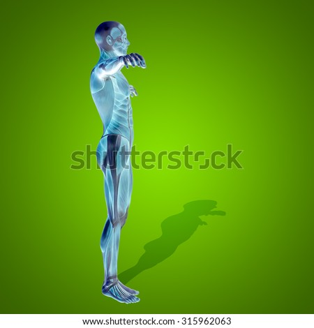 Conceptual strong human, man 3D anatomy body with muscle for health or sport on green background for medicine, sport, male, muscular, medical, health, medicine biology anatomical strong fitness design - stock photo