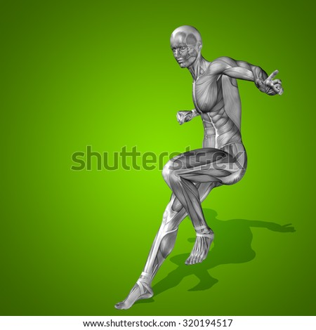 Conceptual strong human man 3D anatomy body with muscle for health, sport on green background for medicine, sport, male, muscular, medical, health, medicine, biology, anatomical, strong fitness design - stock photo