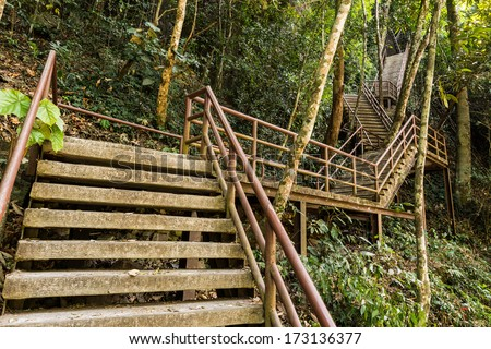 Concrete Stair in the Khao Yai Forest at Thailand - stock photo