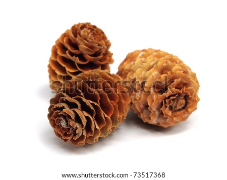 cones on the white isolate background - stock photo