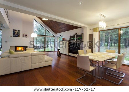 Contemporary living room with the sitting dog - stock photo