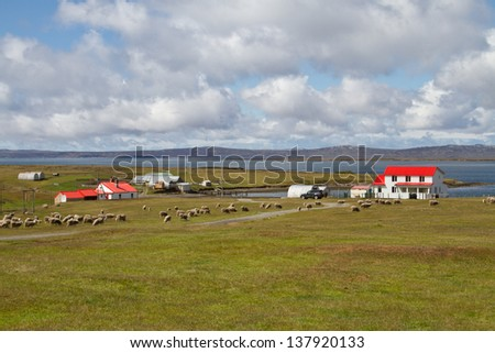 Contryside Falkland Islands - stock photo