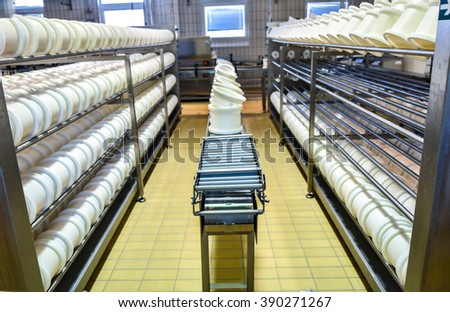 Conveyor belt in a cheese factory with a plastic cheese molds - stock photo