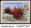 COOK ISLANDS - CIRCA 1998: A stamp printed in Cook Islands shows Red Pencil Sea Urchin - Heterocentrotus mammillatus, circa 1998 - stock photo