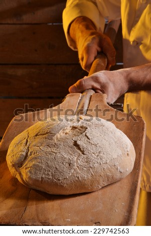 Cook taking out the bread from the oven.Baker holding a fresh bread just taken out of the oven. - stock photo