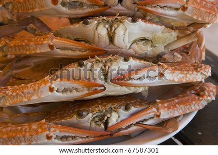 Cooked crabs - stock photo