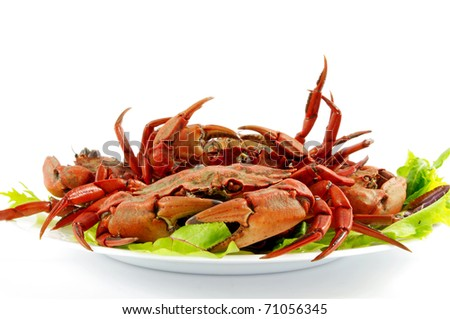 cooked crabs on plate - stock photo