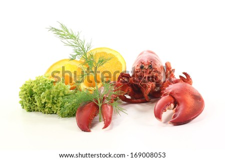 cooked lobster - stock photo