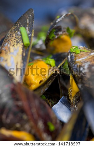 Cooked mussel with olive oil and herbs close up. Very shallow depth of field. - stock photo