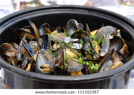 Cooked Mussels - stock photo