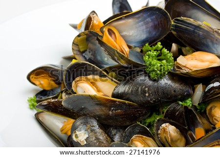 cooked open blue mussels on white background - stock photo