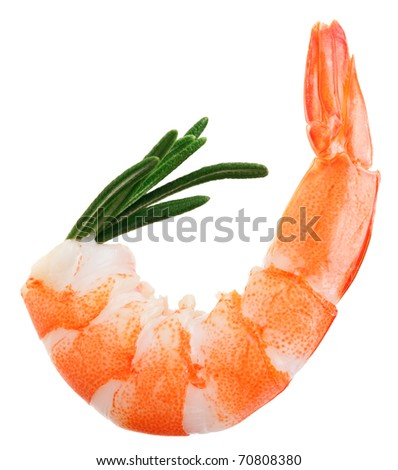 Cooked unshelled tiger shrimp with rosemary twig isolated on white - stock photo