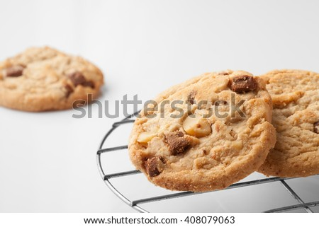 Cookie : A stack of delicious homemade round milk chocolate chip macadamia cookie on white - stock photo