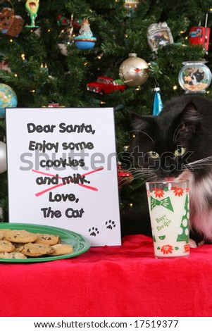 Cookies and Milk for Santa 3 - stock photo