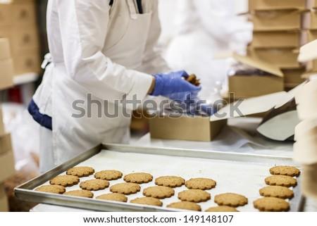 Cookies factory - stock photo