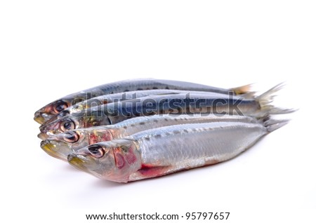 Cooking ingredient series    sardine. available for clipping work - stock photo