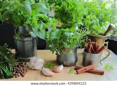 Cooking ingredients. Fresh and aromatic herbs - stock photo