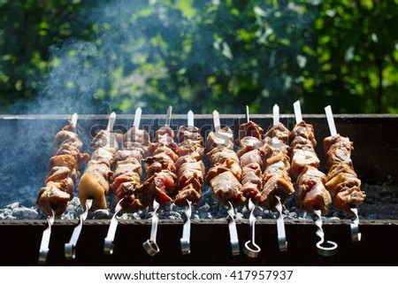 Cooking meat on the fire. - stock photo
